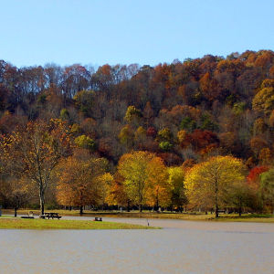 Lake in Wayne County, W. VA